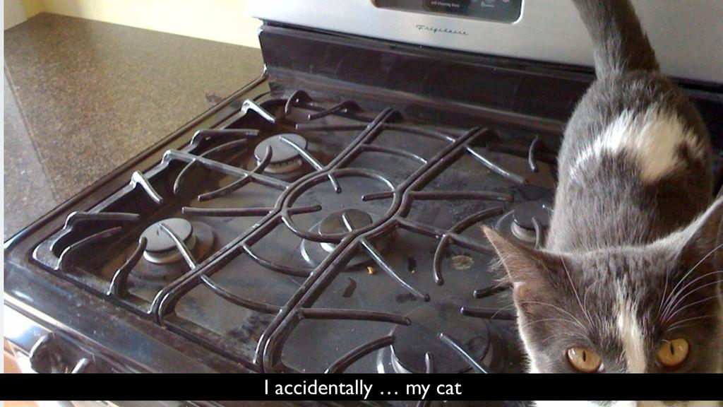 I accidentally … my cat