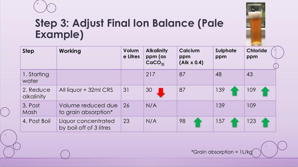 Step 3: Adjust Final Ion Balance (Pale Example)...