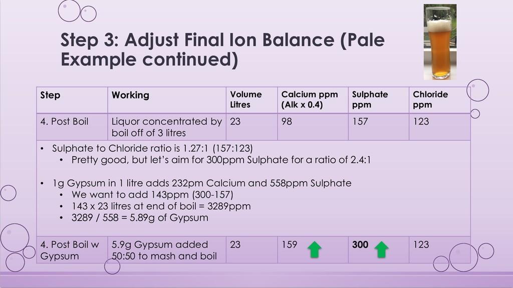 Step 3: Adjust Final Ion Balance (Pale Example ...