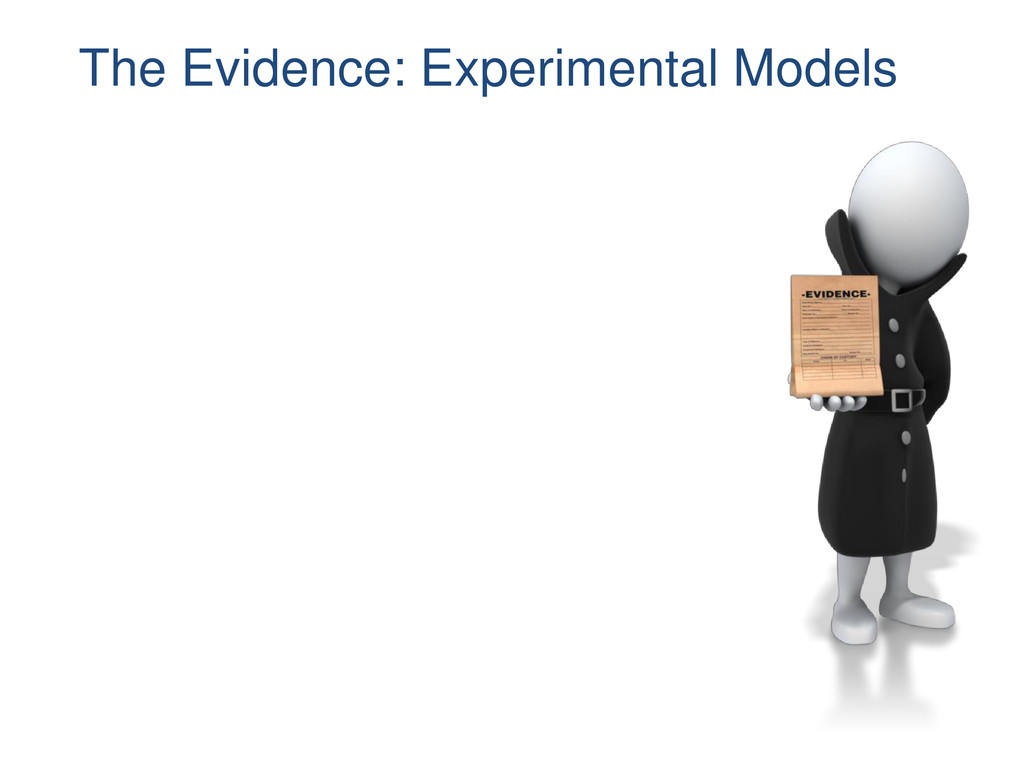 The Evidence: Experimental Models
