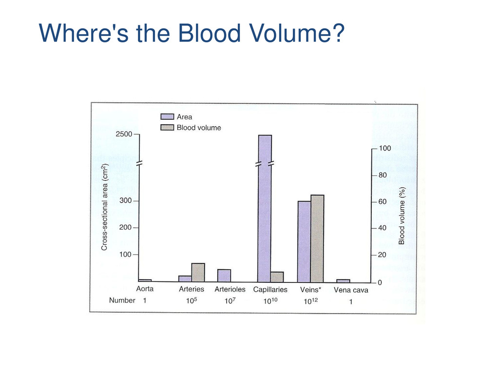 Where's the Blood Volume?