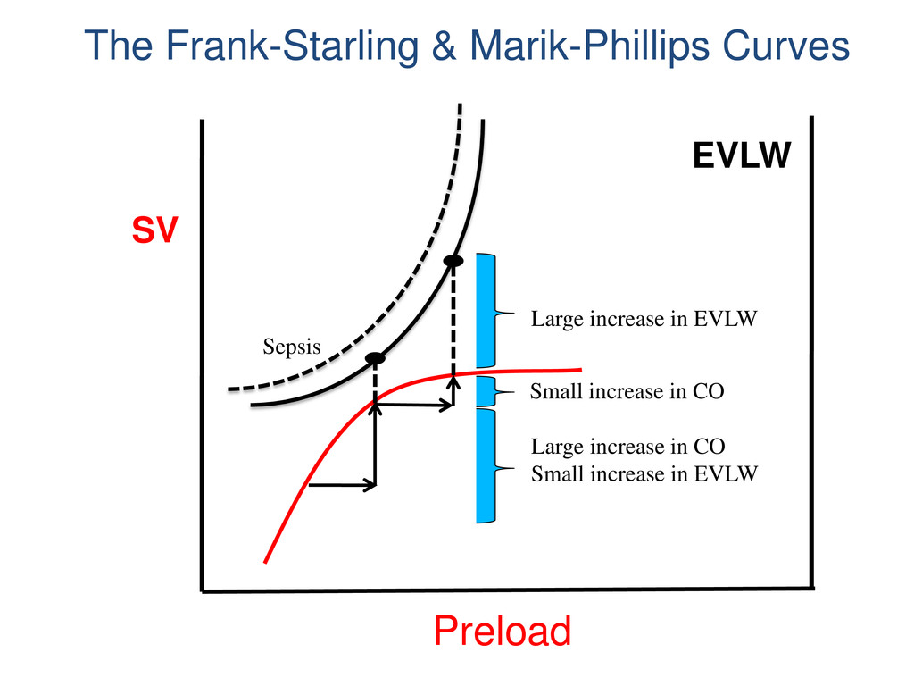 SV EVLW Preload Large increase in EVLW Small in...