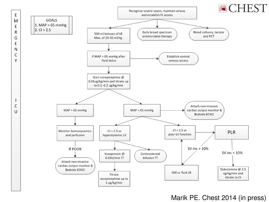 Marik PE. Chest 2014 (in press)