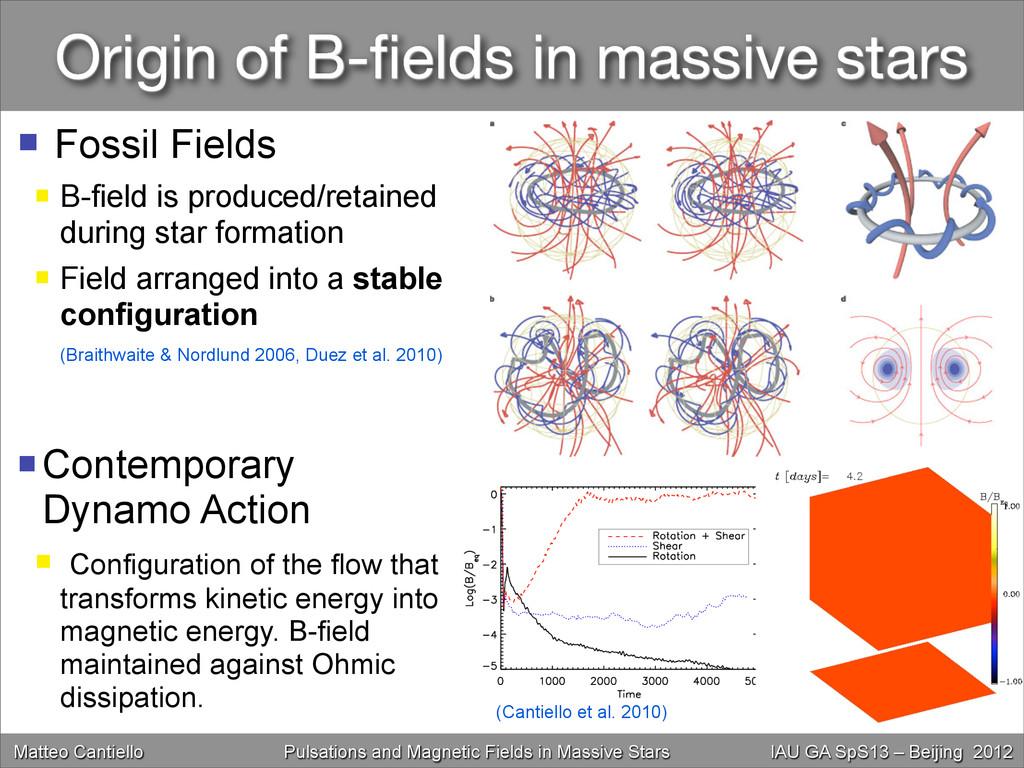Origin of B-fields in massive stars Matteo Canti...