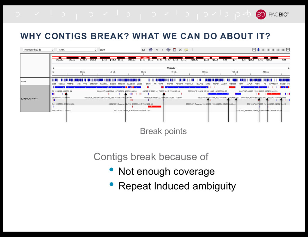 WHY CONTIGS BREAK? WHAT WE CAN DO ABOUT IT? Bre...