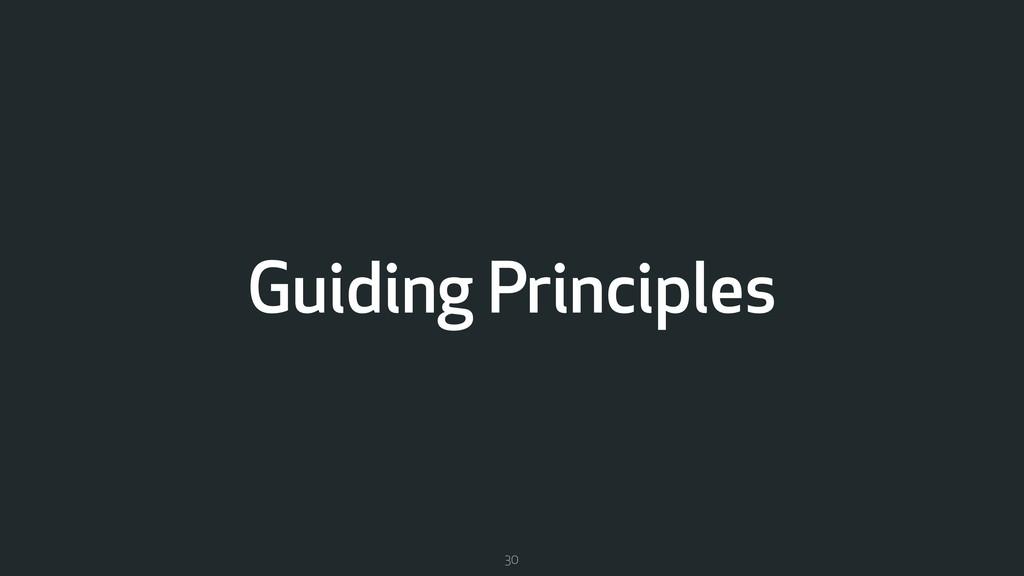 Guiding Principles 30