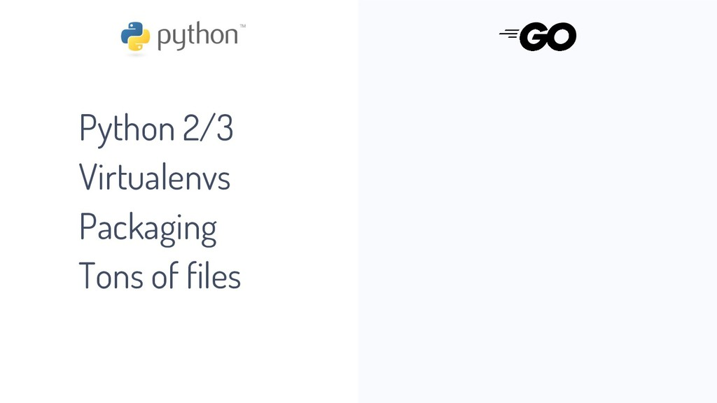 Python 2/3 Virtualenvs Packaging Tons of files