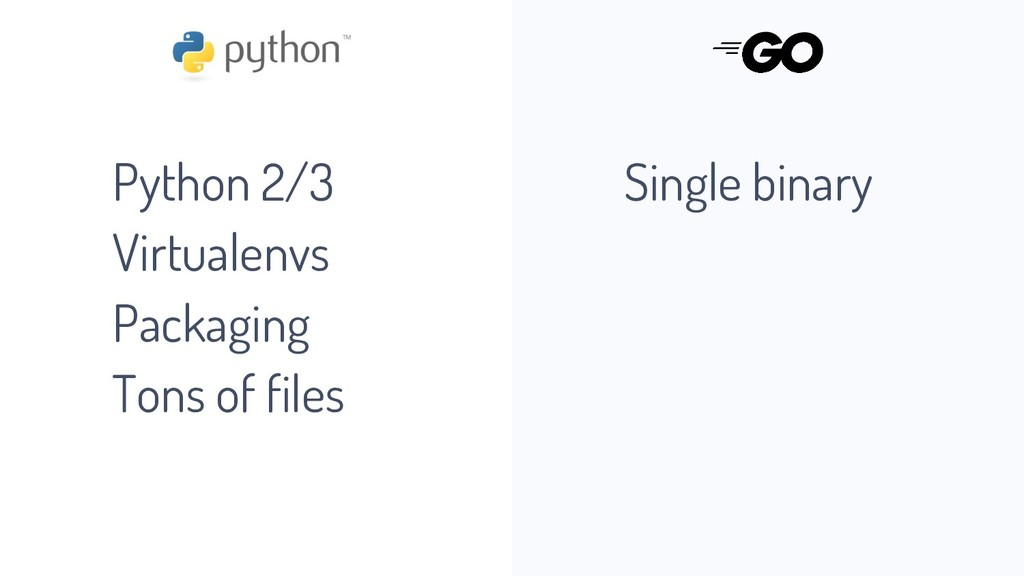 Python 2/3 Virtualenvs Packaging Tons of files ...
