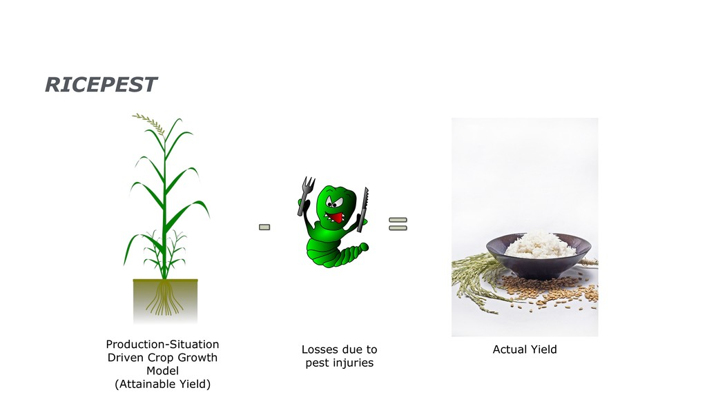 Losses due to pest injuries Actual Yield Produc...