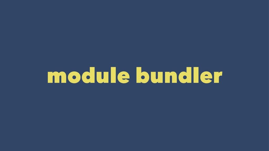 module bundler