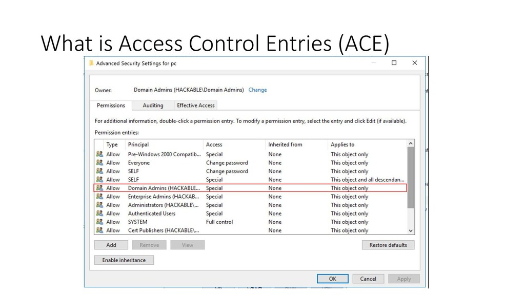 What is Access Control Entries (ACE)