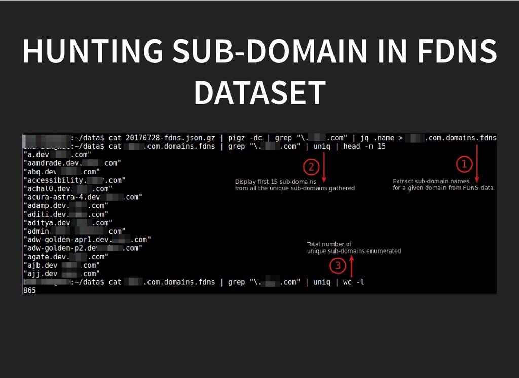HUNTING SUB-DOMAIN IN FDNS HUNTING SUB-DOMAIN I...