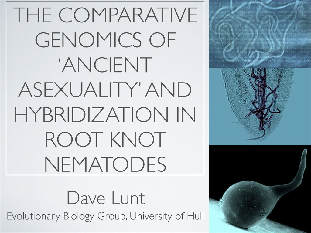 THE COMPARATIVE GENOMICS OF 'ANCIENT ASEXUALITY...