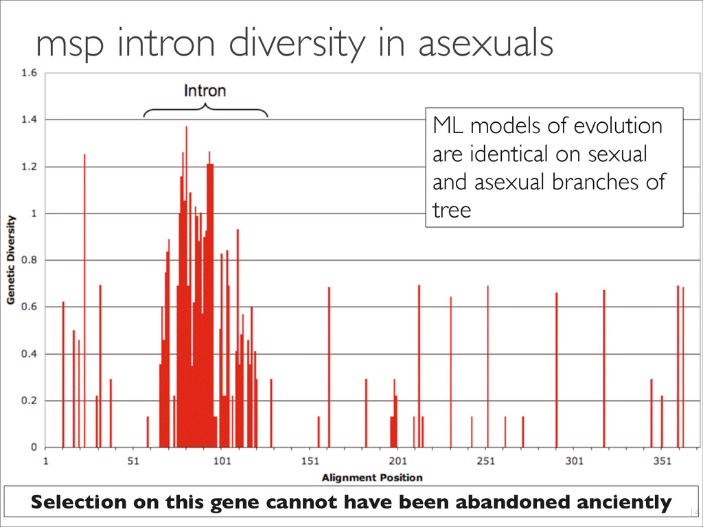 msp intron diversity in asexuals 14 ML models o...