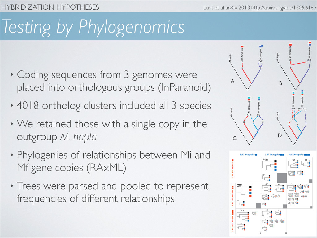 HYBRIDIZATION HYPOTHESES Testing by Phylogenomi...