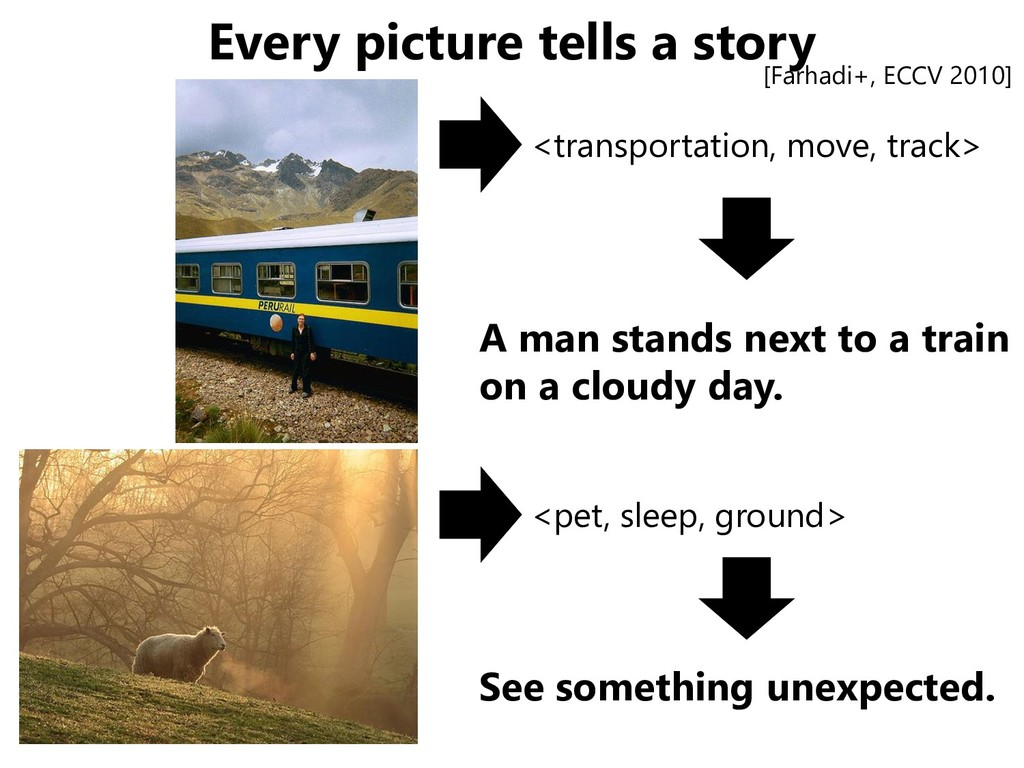 Every picture tells a story <pet, sleep, ground...