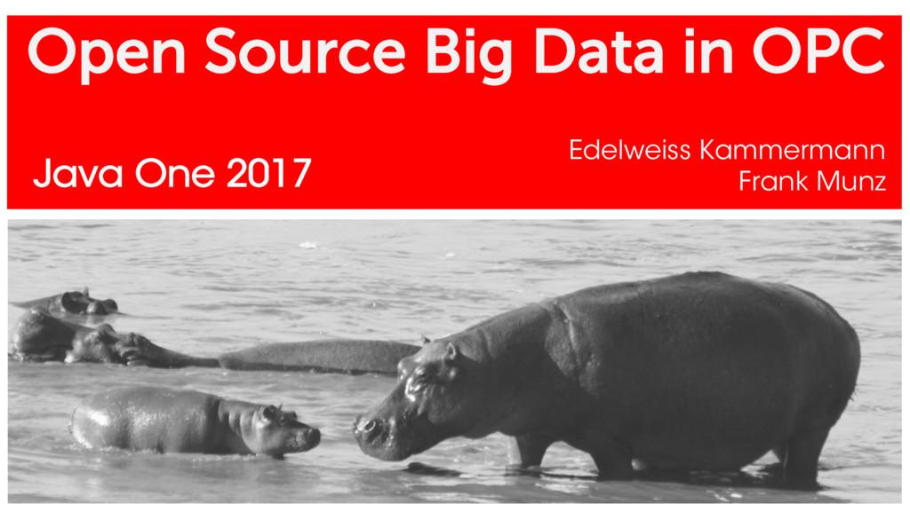 Open Source Big Data in OPC Edelweiss Kammerman...