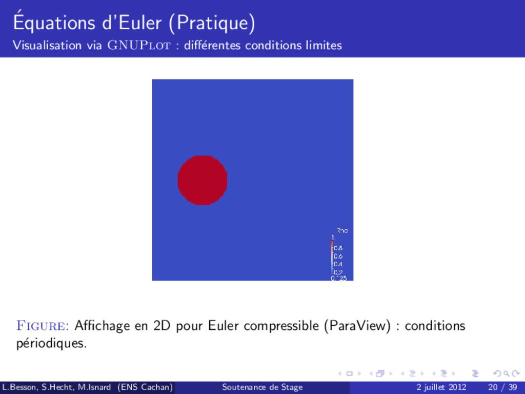 ´ Equations d'Euler (Pratique) Visualisation vi...