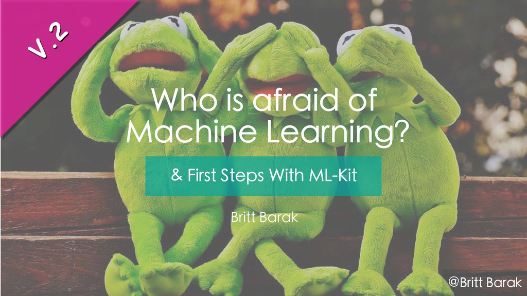 Who is afraid of Machine Learning? Britt Barak ...
