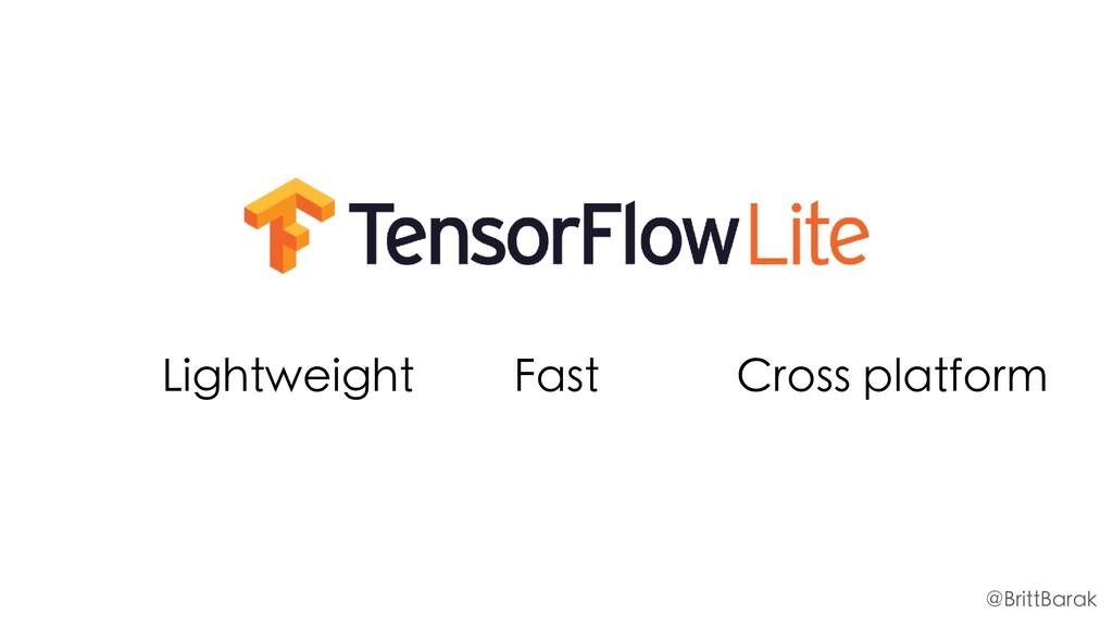 Lightweight Fast Cross platform @BrittBarak