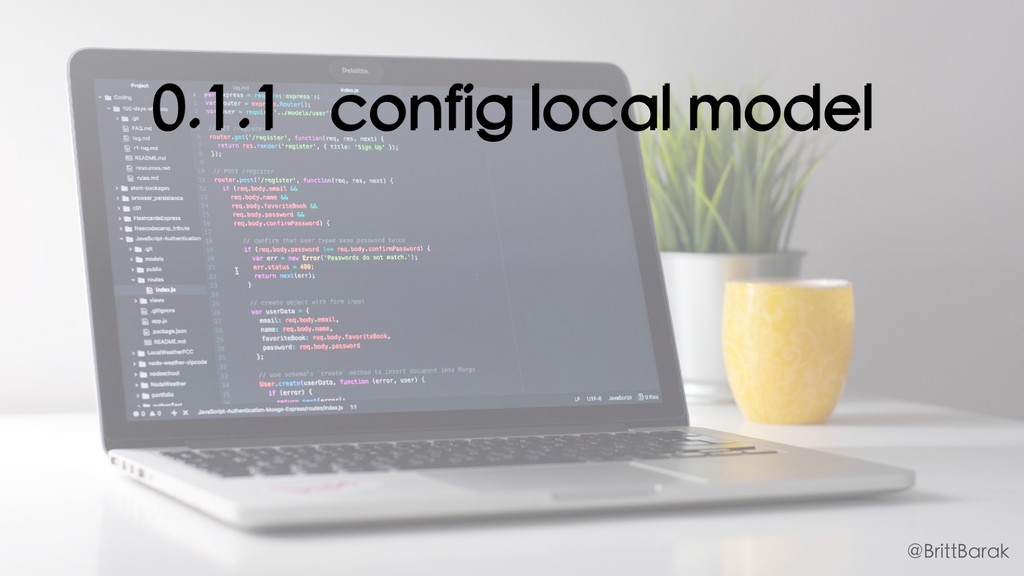 0.1.1 config local model @BrittBarak