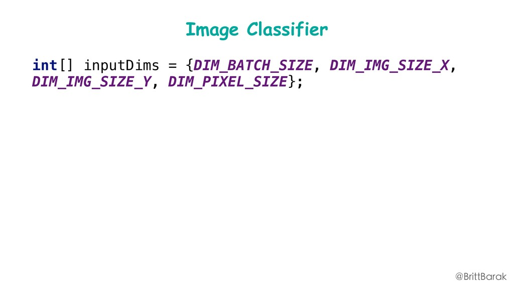 Image Classifier int[] inputDims = {DIM_BATCH_S...