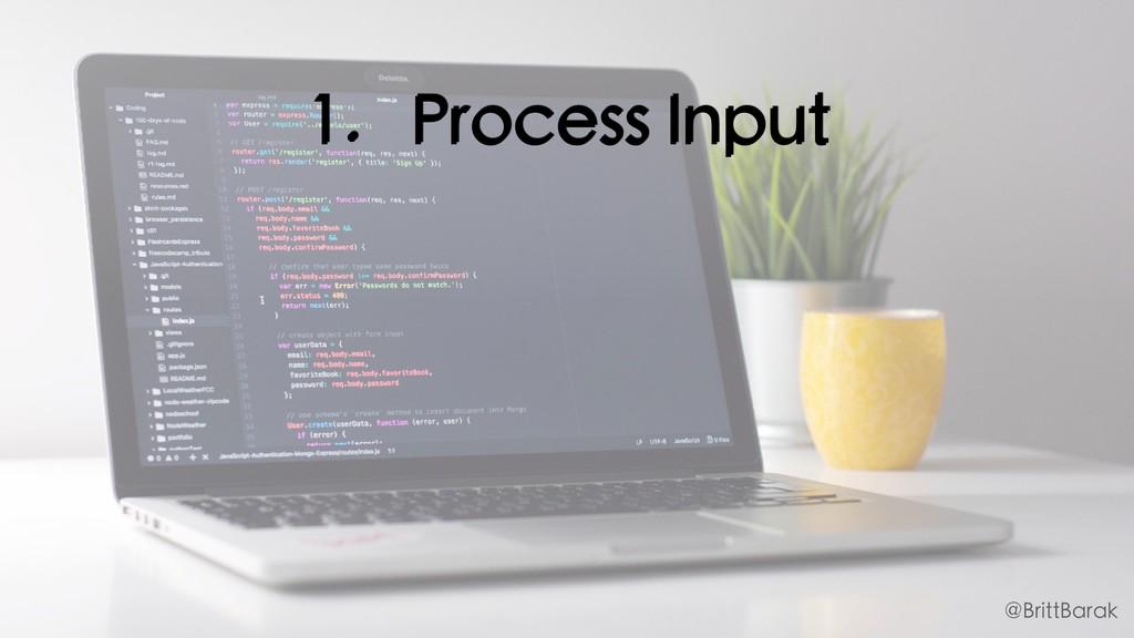 1. Process Input @BrittBarak