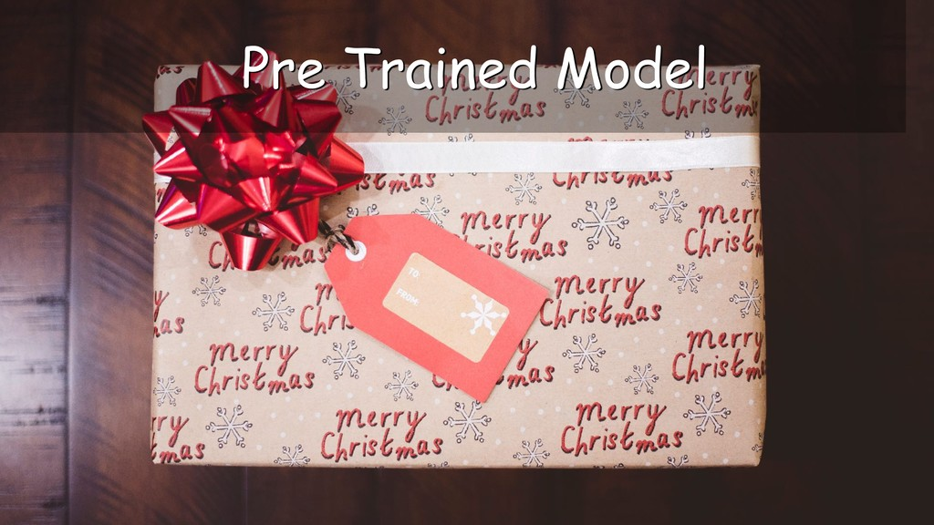 Pre Trained Model