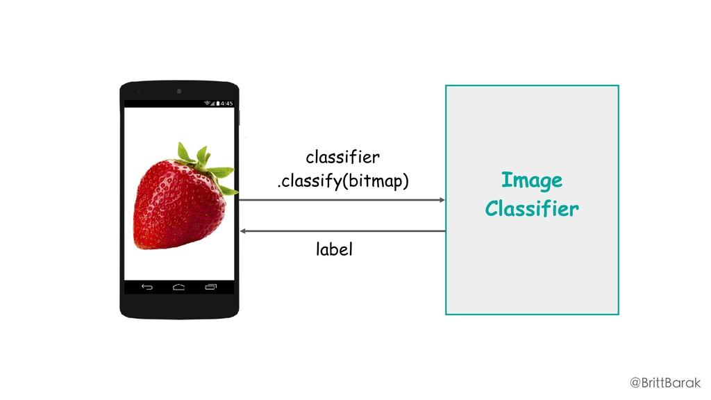 Image Classifier classifier .classify(bitmap) l...