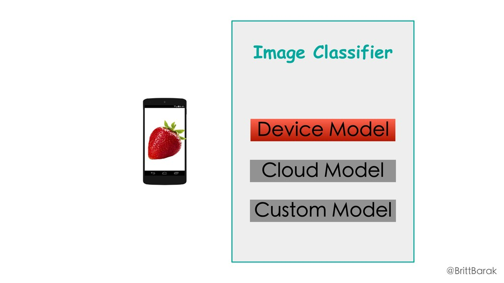 Image Classifier Device Model Cloud Model Custo...