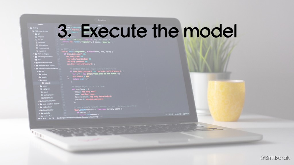 3. Execute the model @BrittBarak