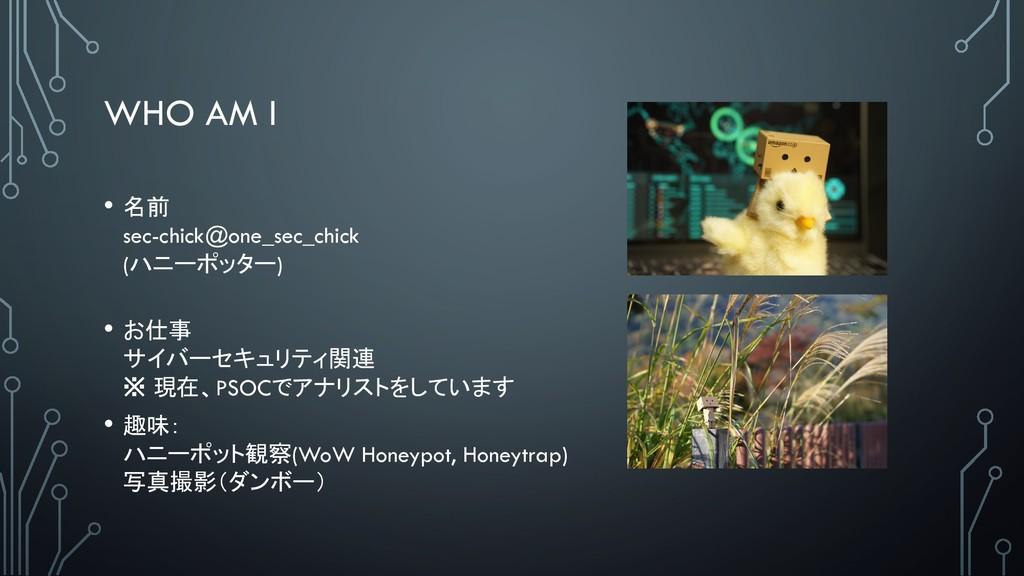 WHO AM I •  sec-chick@one_sec_chick (('/+#!/)...