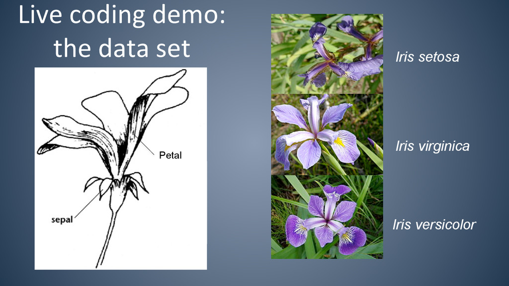 Live coding demo:  the data set...