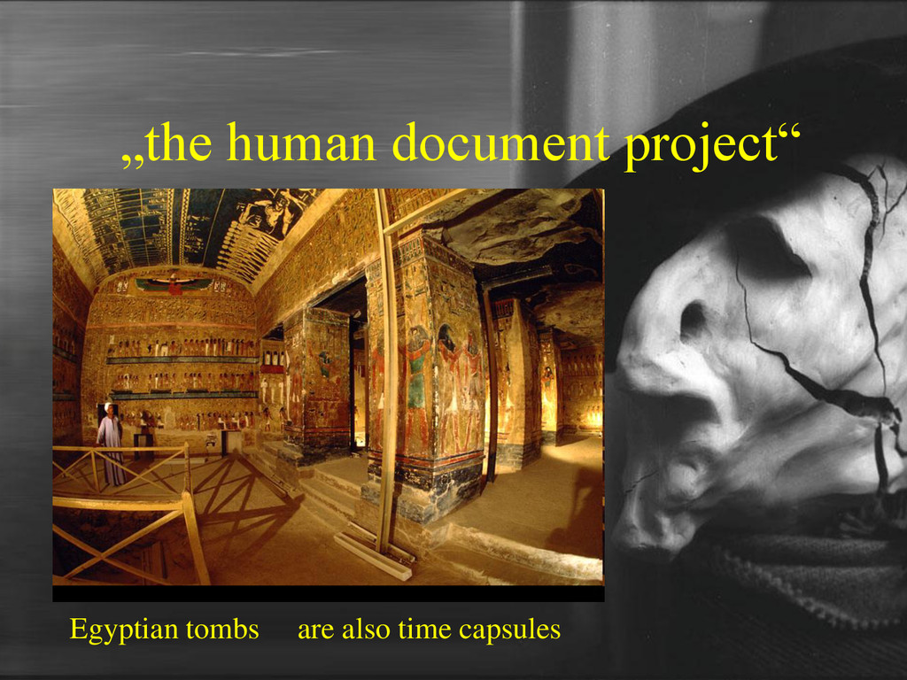 """the human document project"" Egyptian tombs are..."