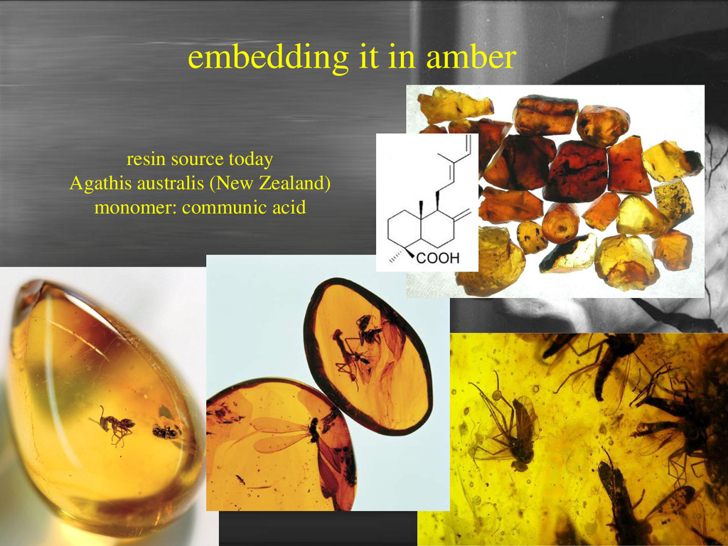 embedding it in amber resin source today Agathi...
