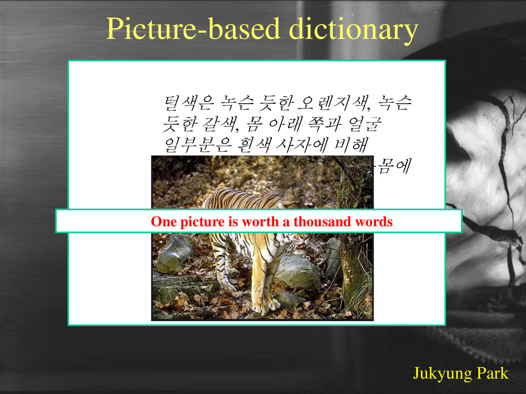 Picture-based dictionary Example 호랑이 : 털색은 녹슨 듯...