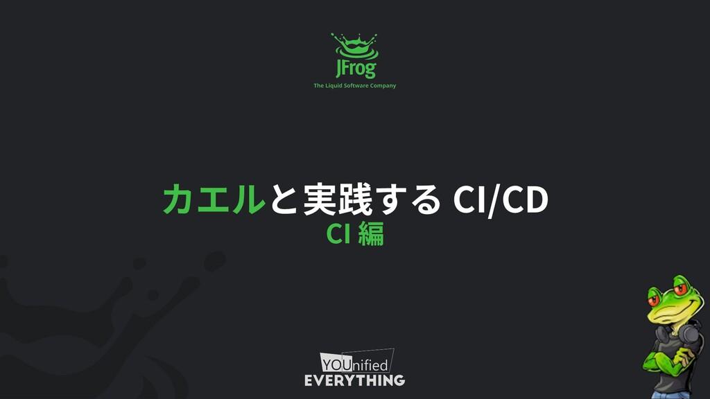 CI/CD CI