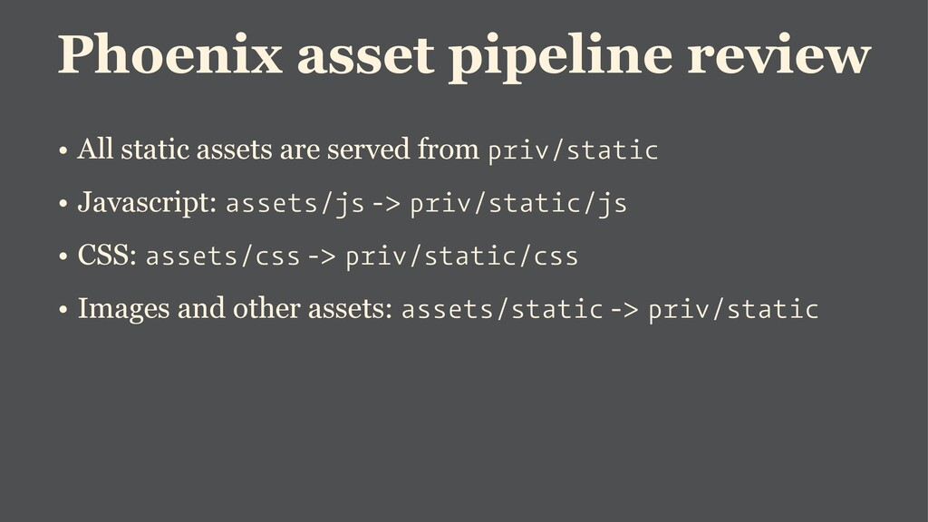 Phoenix asset pipeline review • All static asse...