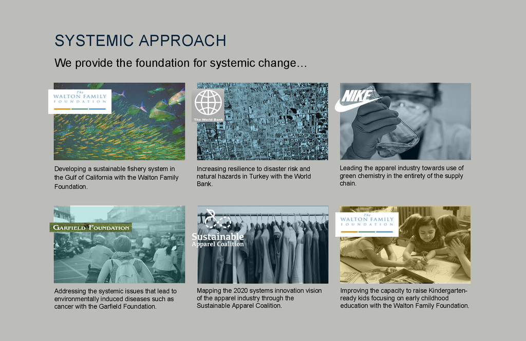 We provide the foundation for systemic change… ...