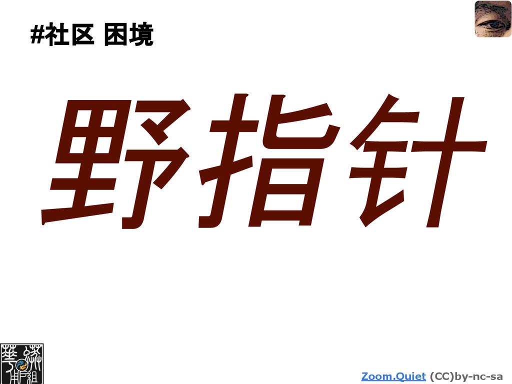 Zoom.Quiet (CC)by-nc-sa #社区 困境 野指针