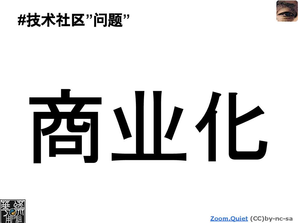 "Zoom.Quiet (CC)by-nc-sa #技术社区""问题"" 商业化"