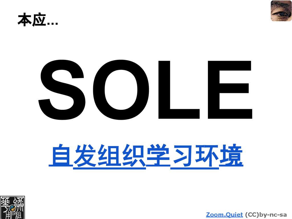 Zoom.Quiet (CC)by-nc-sa 本应... SOLE 自发组织学习环境