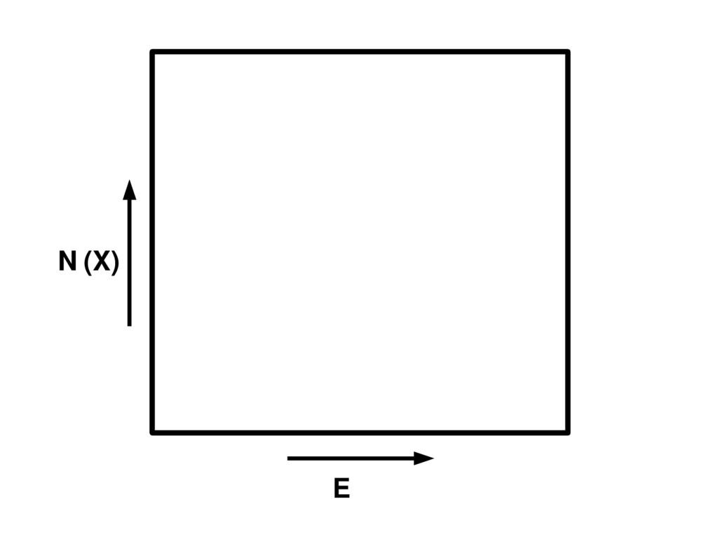 N (X) E