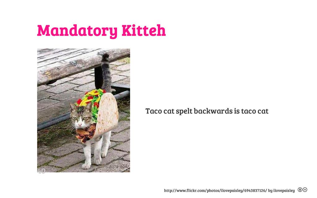 Mandatory Kitteh Taco cat spelt backwards is ta...