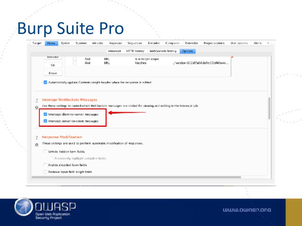 Burp Suite Pro