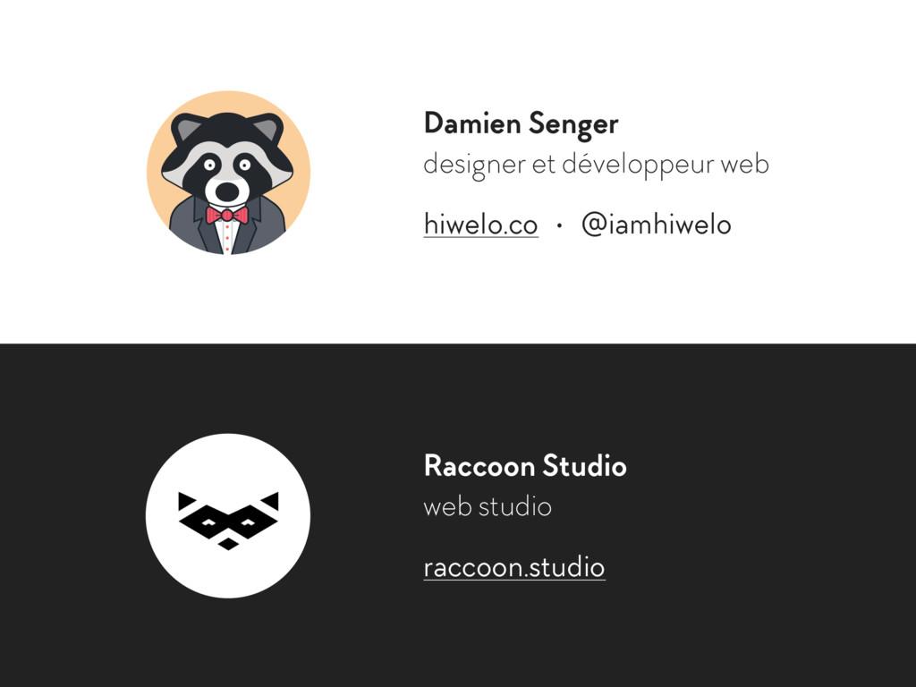 Damien Senger designer et développeur web hiwel...