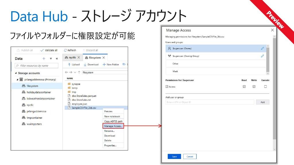 Data Hub - ストレージ アカウント ファイルやフォルダーに権限設定が可能