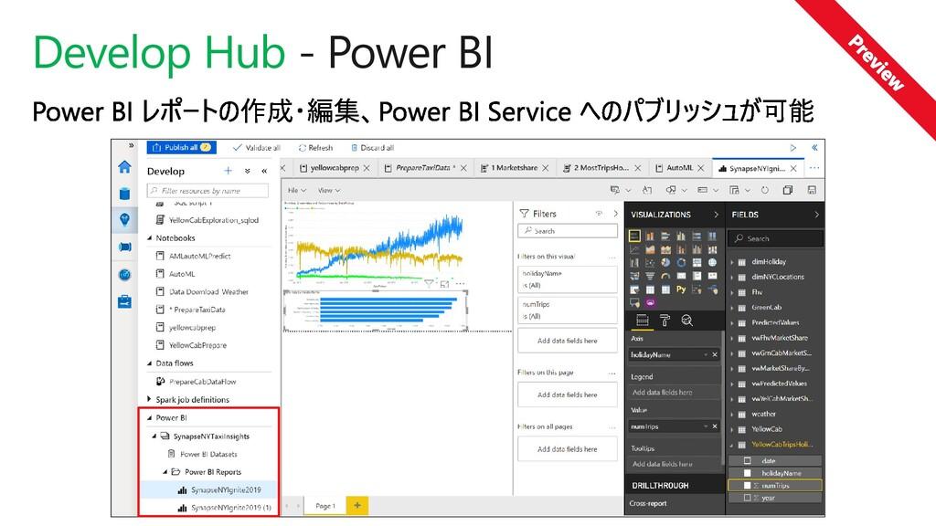 Develop Hub - Power BI