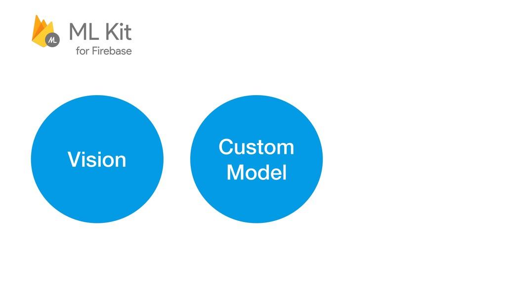 Vision Custom Model