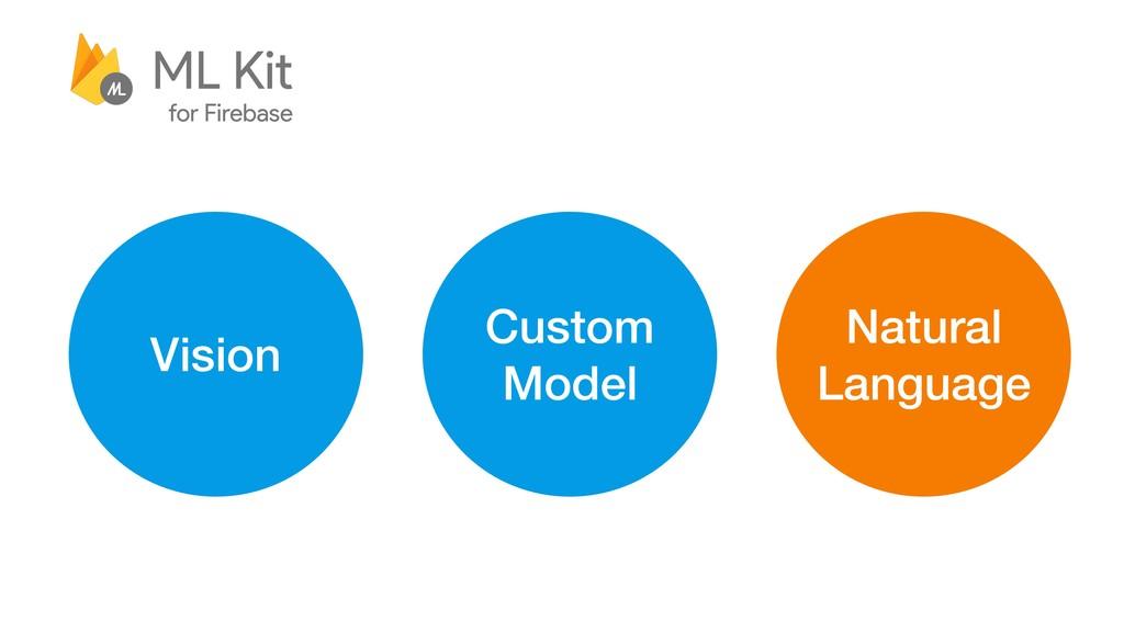 Vision Custom Model Natural Language